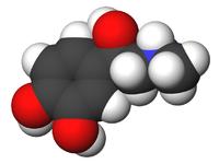 вазопрессин гормон