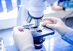 анализ антитела к ттг