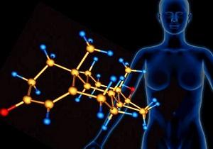 железы внешней и внутренней секреции человека