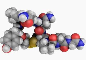 гастрин 17 базальный повышен причины