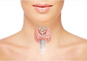 гормоны щитовидной железы какие сдавать