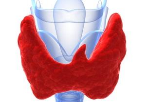 Низкий уровень гормонов щитовидной железы