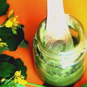 Рецепты от натоптышей на основе чистотела