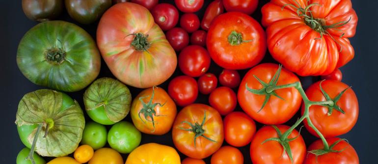 Можно ли помидоры при отравлении