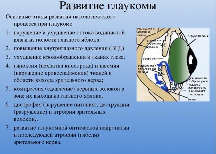 Общее описание и показания к применению ушных капель Софрадекс