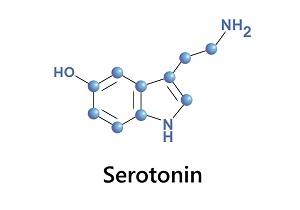 В каких продуктах содержится эндорфин и серотонин