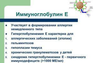 Иммуноглобулин E