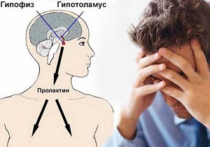 Норма пролактина в крови у мужчин