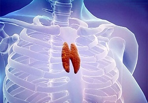 вилочковая железа у взрослых симптомы