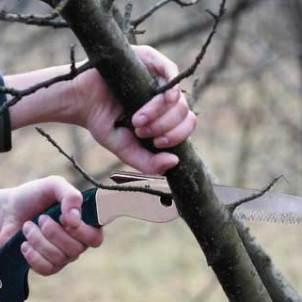 Виды мозолей на руках и способы их удаления