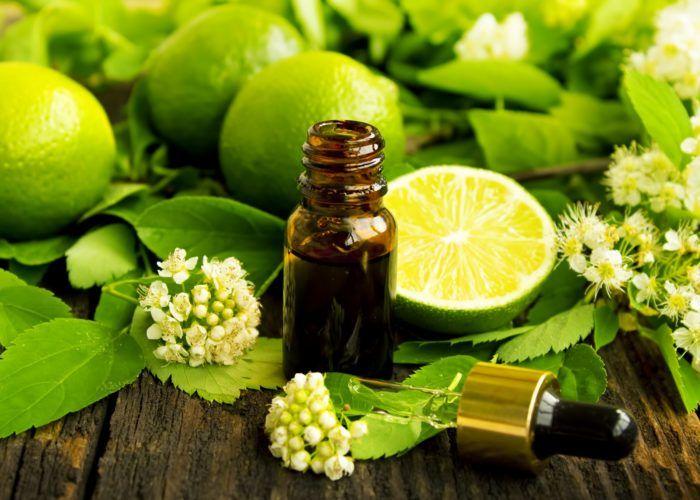 Масло бергамота и свежие плоды для отвара