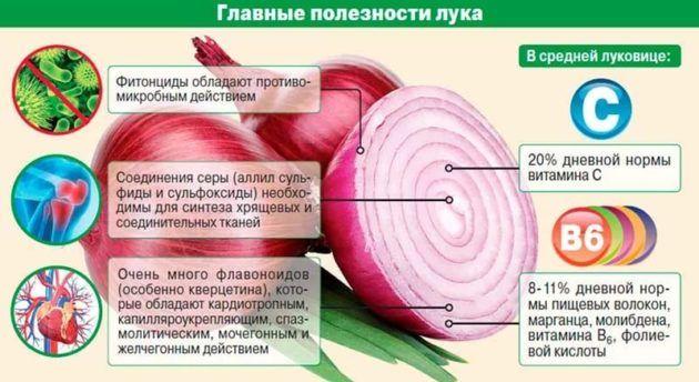 Лечение луком