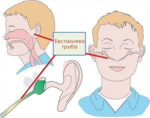 Соединение носоглотки со средним ухом