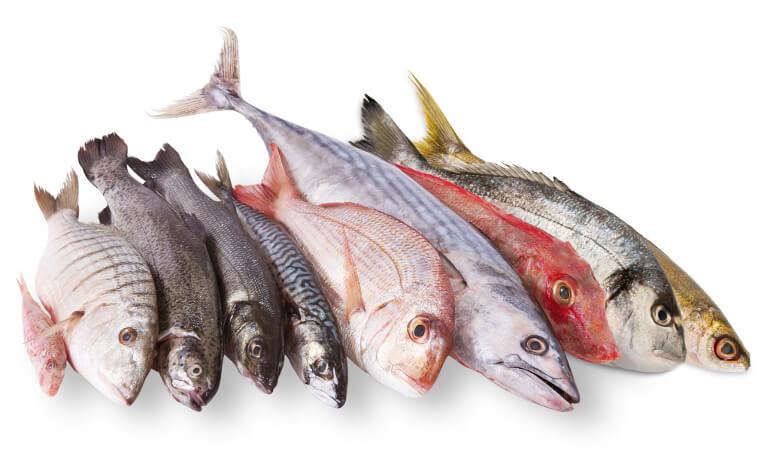 Отравление рыбой – симптомы, первая помощь, лечение, последствия
