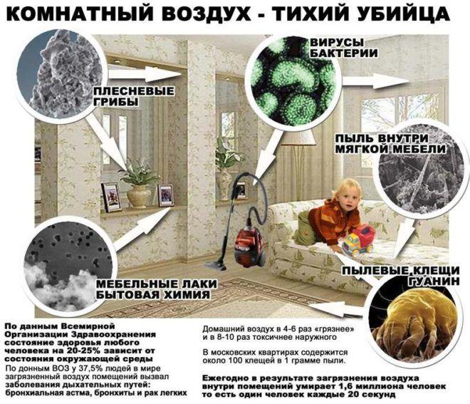 Основные источники аллергии в квартире