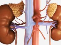 гиперплазия надпочечников