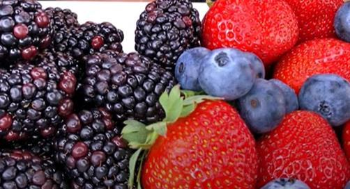 Ежевика и клубника - фрукты с низким содержанием сахара