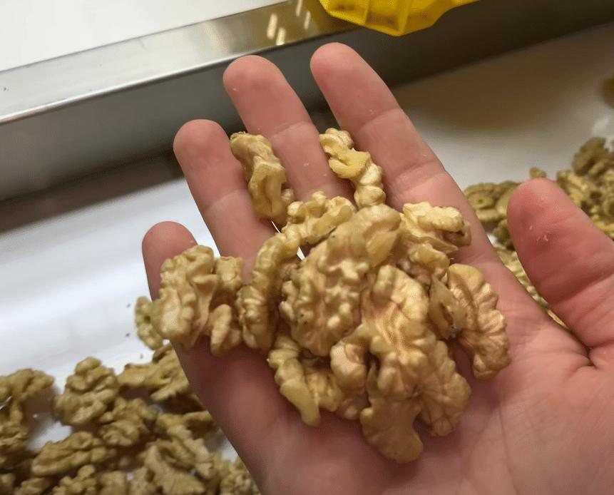Диета для эндоморфа разрешает употреблять грецкие орехи